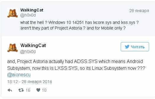 В новой сборке Windows 10 были замечены файлы из подсистемы Linux